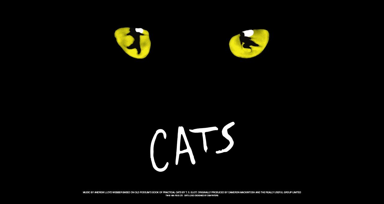 Cats Titelbild
